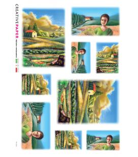 Carta di riso per decoupage PAE_0004