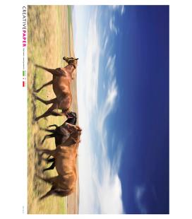 Carta di riso Decoupage: Cavalli in Corsa