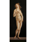Sandro Botticelli - Venus Pudica. Printing on canvas