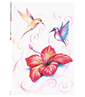 Carta di riso Decoupage: Uccelli con Ibisco